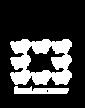 Dámské tričko černá ovce rodiny